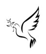 Dove Bird Peace - 73081530
