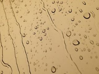 rainy sepia