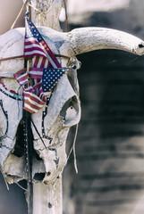 Rinderkopf mit eingeschnürter USA-Flagge