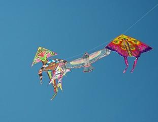 Воздушные змеи в небе.