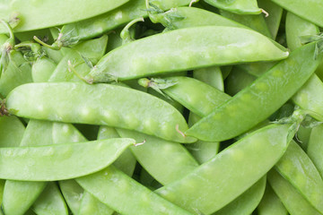 close-up of snow peas