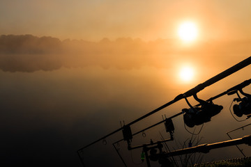 Carp fishing rods misty lake France