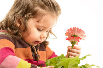 Cute little girl playing with flowers, arranging them