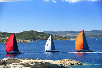 Sailboats regatta racing