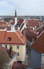Над крышами Таллина. Эстония
