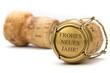 Leinwandbild Motiv Champagner Korken - Frohes Neues Jahr!