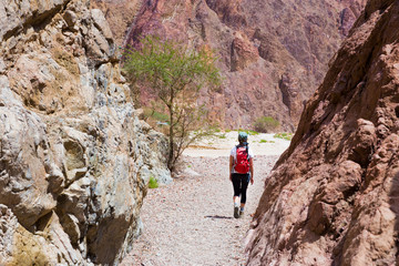 Woman backpacker walking desert canyon.