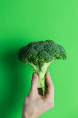 Hand holding broccoli on green background