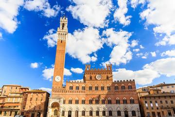 Torre del Mangia and Palazzo Pubblico, Siena.