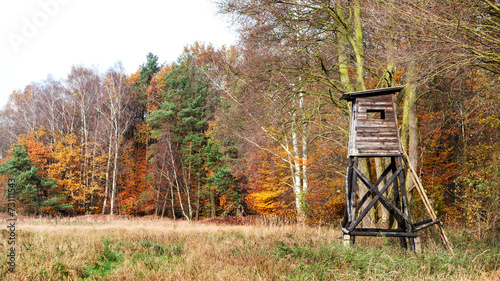 Aluminium Bossen Panoramic view of a hunting pulpit in autumn.