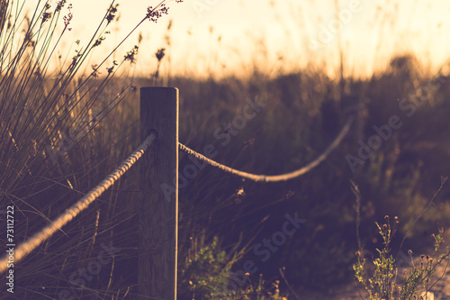 Beautiful image of sun shining and back lighting countryside lan - 73112722