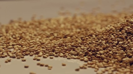Heap of quinoa seeds,rotating