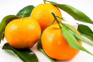 Closeup of three sweet tangerines