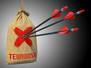 Terrorism - Arrows Hit in Red Target.