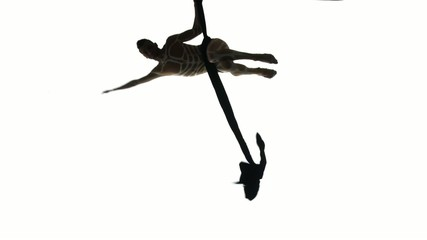 Man dancer on aerial silk, aerial contortion, aerial ribbons,