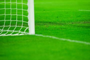 Soccer field detail
