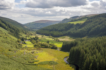 Valley in Wicklow