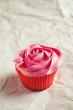 Vanilla and pink rose piping pretty cupcake