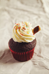 Chocolate sundae cupcake with colorful sprinkles