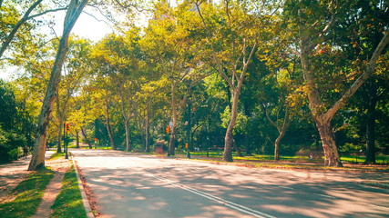 central park traffic road 4k time lapse from heart of new york