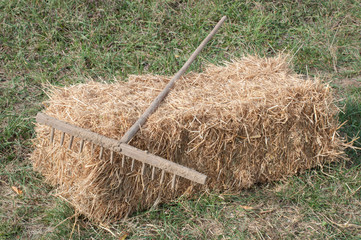 Rake in the garden, left down on a straw bale