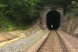 Railroad Tunnel - 73128517