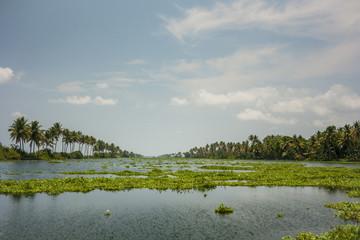 Kerala waterways and boats