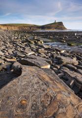 Fossil hunting on the Dorset coastline
