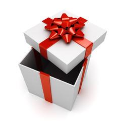 Christmas or birthday present