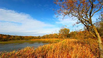 Rock Cut State Park Illinois