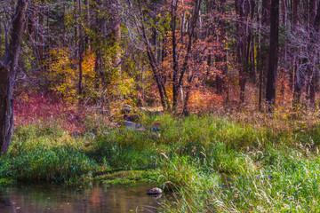 Beautiful Sedona Arizona on a Autumn Day