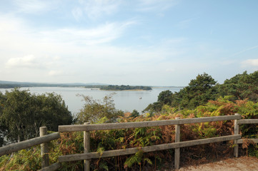 Coastal path on Brownsea Island