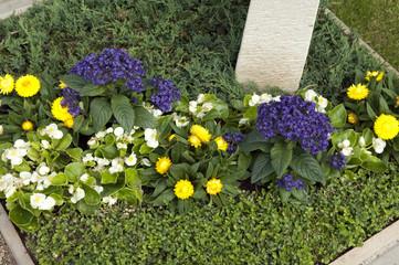 Grabbepflanzung; Randbepflanzung, Blumen