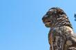 Obrazy na płótnie, fototapety, zdjęcia, fotoobrazy drukowane : The Lion of Amphipolis