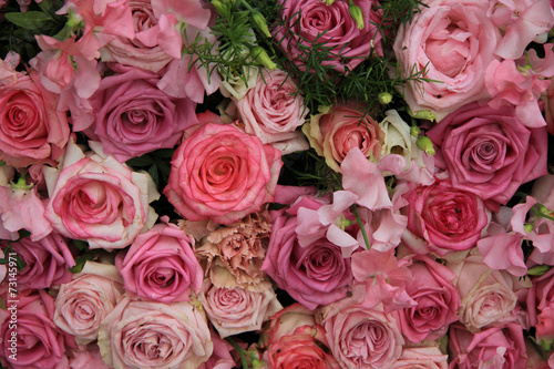 canvas print picture Pink roses