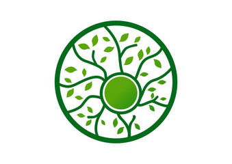 Circle green leaf with roots logo vector