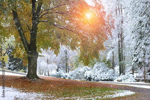 canvas print picture Wintereinbruch im Herbst