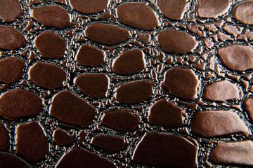 Dark alligator patterned