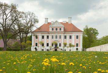 Schloss und Löwenzahn