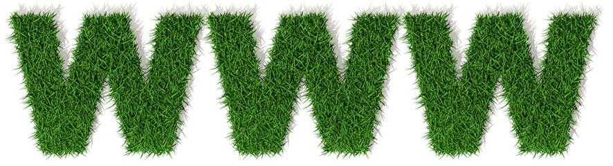 WWW erba verde, parola isolata su sfondo bianco