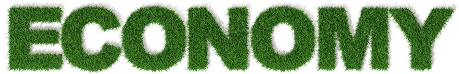 Economy economia erba verde, parola isolata su sfondo bianco
