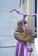 Pink bicycle with lavander basket