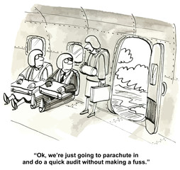 """...parachute in and do a quick audit without a fuss."""