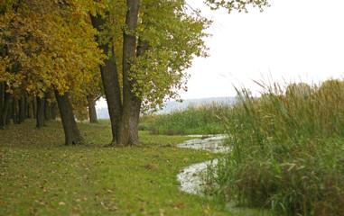 oak grove, lake