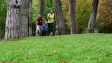 Joggers training in the park, slow motion shot, steadycam shot