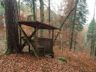 Jägersitz über der Waldschlucht