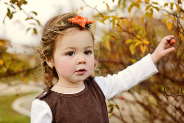 sweet toddler in fall