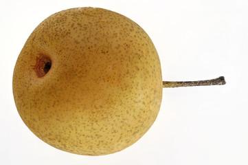 japanische Nashi-Birne