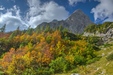 Autumn in the mountains in Julian Alps