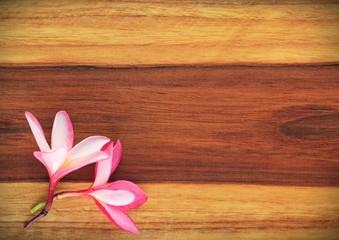Frangipani On Wood